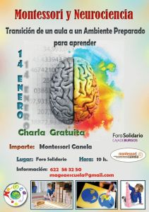 Montessori y Neurociencia